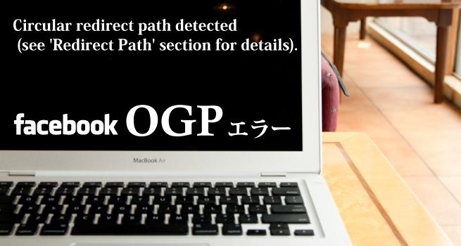 Circular-redirect-path-detectedエラー